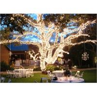 Düğün Konseptinde Işıklandırma Örnekleri