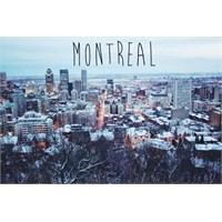 Kuzey Amerika'da Avrupali Bir Şehir: Montreal