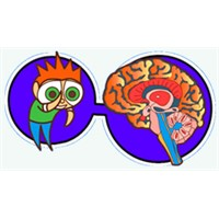Vücut – zihin bağlantısı oyunları