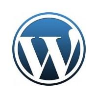 Wordpress Font İkonları