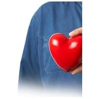 Kalp Ve Damar Hastalıklarına Hangi Bitkiler İyi Ge