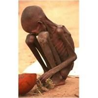 Dünyamızda Açlık Döngüsü