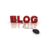 İnternetten Para Kazanmak İçin Niş Bir Blog