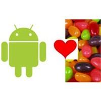 İşte Yeni Android'in Adı!