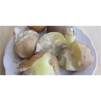 Organik Patates(Artvin'den)