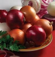 Hangi Meyve Hangi Mevsimde Yenir ?