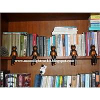 Kitaplık Bekçileri