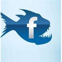 Facebookta Video Tuzağı Dikkat !