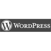 Wordpress On Milyona Koşuyor