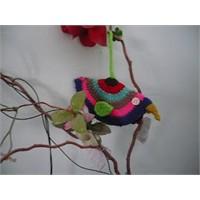 Örgü Kuşlar