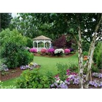 Kullanım Alanına Göre Bahçe Dekorasyonu
