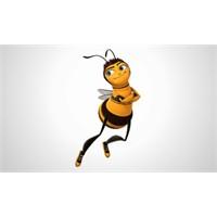 Arılarında tiryaki olduğu kanıtlandı