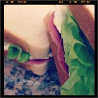 İşe Götürmelik Lezzetli Sandviçler