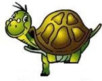 Biyonik Kaplumbağa Ve Yardımsever Kazlar
