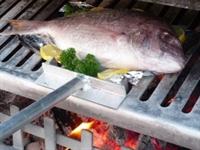 Hangi Balık, Nasıl Ve Ne Zaman Pişirilmeli ?