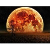 Bu Gece '' Süper Ay'' Gökyüzünde!