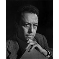 Özgür Olanlar, Mobbing, Albert Camus