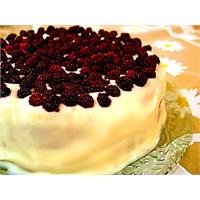 Böğürtlenli Pasta Tarifi Buyrun