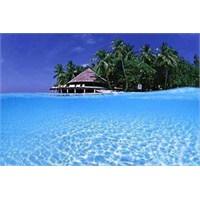 Yeryüzünün Yalancı Cenneti Maldiv Adaları