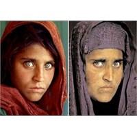 Afgan Kızı Şarbat, Mccury, Gaziantep Ve Hatıralar