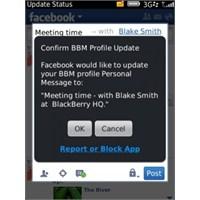Bb Messenger'dan Facebook Ve Twitter Entegrasyonu