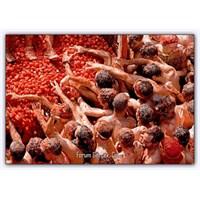 Domates Festivali (İspanya)