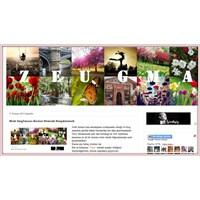 Web Sayfasını Resim Olarak Kaydetmek