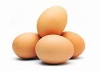 Yumurta İhracatı Rekor Kırdı