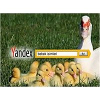 Yandex'i Tanıyalım!