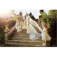 Jacquetta Wheeler 'nin Düğünü