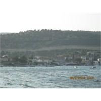 Devekuşu Nun 2012 Yılı Gezi Günceleri Balıklıova