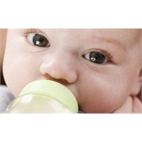 Süt Dosyası 6 - Bebek Beslenmesinde Süt
