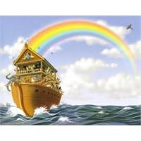 Musa Gemisine Kaç Tür Hayvan Almıştı?