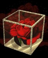 Gerçek Aşkı Yakalamanın Sırları