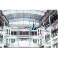 Robot Yusufçuk ' Bionicopter'