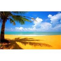 Dünyanın En Mükemmel 10 Plajı