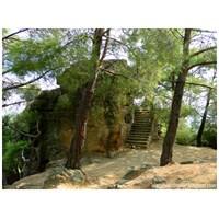 Zeus Altarı - Kazdağları (İda)
