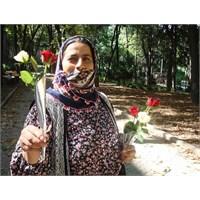 Bir Sevgililer Günü Kabusu: Çiçekçi Çingene