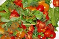 Oktay Usta dan Ispanak Salatası