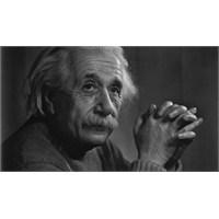 Einstein Beyni İpad Uygulaması Oldu!