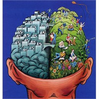 Sağ Beyinli Misiniz Sol Beyinli Misiniz?