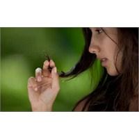 Bakımlı Saçlar İçin Doğadan Yardım Alın!