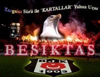 Bjk Şampiyonluk Görüntüleri (video)