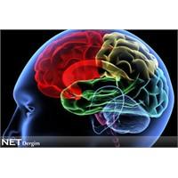 Beyin dostu besinler
