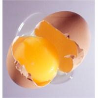 Yumurta Akının Cilde Faydaları Nelerdir?