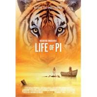 Tam 11 Dalda Oscar'a Aday: Pi'nin Yaşamı
