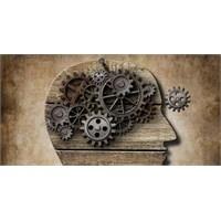 Mantığımıza Engel Olan Bilişsel Yanılgılar – İi