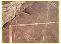 Nazca Çizgilerinin Sırrı | Tanıtım