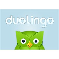 Android Önerisi: Duolingo