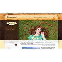 Ücretsiz Blog Şablonları / Free Blogger Templates